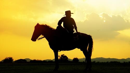 équitation western la rentrée